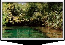 Spring Water - Punta Cana